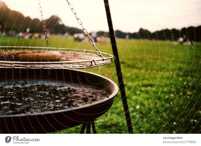 heute geb ich eine wurst für alle aus! Natur grün Einsamkeit Erholung Landschaft Ernährung Wiese Lebensmittel Gras Park Horizont braun rund Schönes Wetter Sommerurlaub Camping