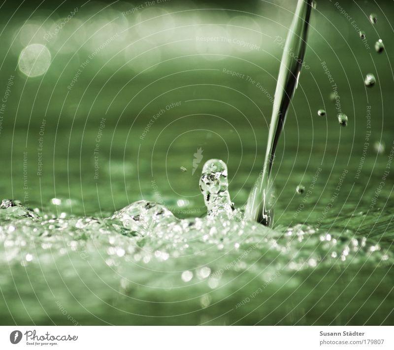 I o O o O o O Natur Wasser grün See träumen Park glänzend Wassertropfen Urelemente Tropfen Brunnen nah Flüssigkeit feucht Teich spritzig