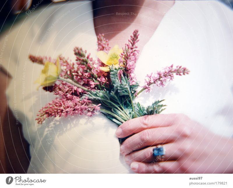 Alte Wunden Hand Blume Freude Finger Blumenstrauß Ring Erinnerung gestikulieren Gruß
