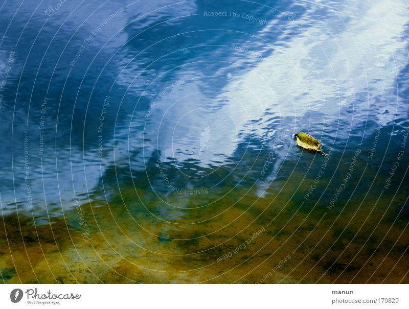 da geht's dahin... Natur Wasser blau Sommer ruhig Blatt Einsamkeit gelb Erholung Herbst Traurigkeit See Zufriedenheit Wandel & Veränderung Vergänglichkeit Gelassenheit