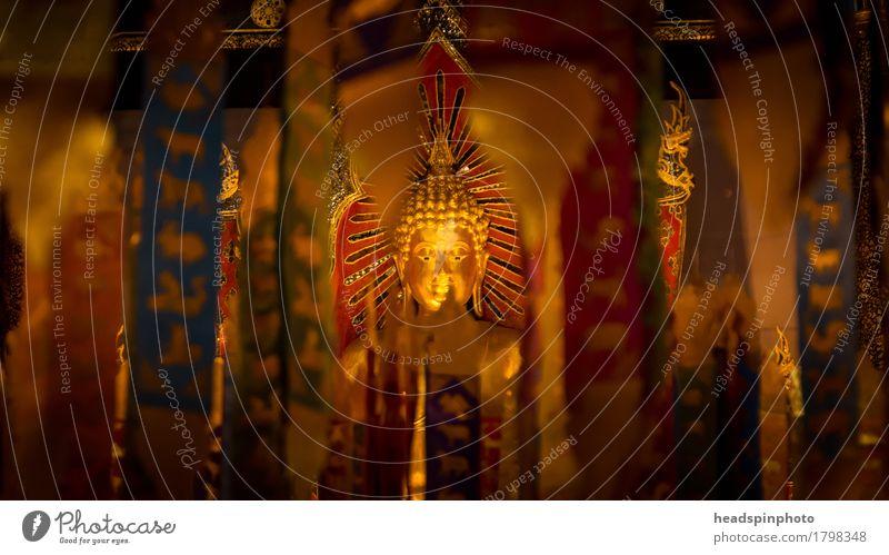 Hidden Buddha Ferien & Urlaub & Reisen Ferne Sightseeing Kunst Gebäude achtsam ruhig Religion & Glaube Tempel Buddhismus Meditation Kopf Gold Chiangmai Thailand