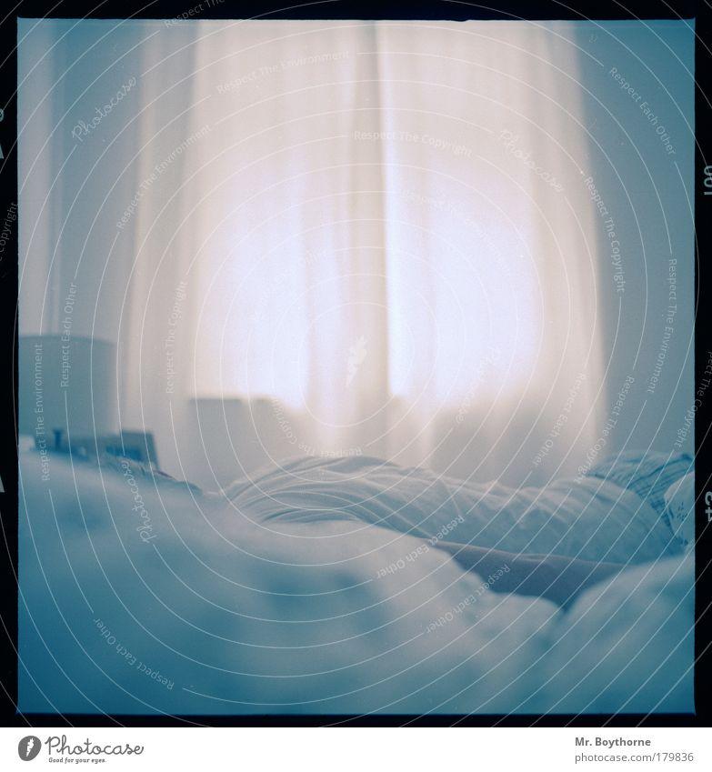 Sonntag. Morgen. Erholung ruhig Wärme Glück hell Zusammensein liegen maskulin Zufriedenheit Häusliches Leben genießen Lebensfreude beobachten Warmherzigkeit weich schlafen