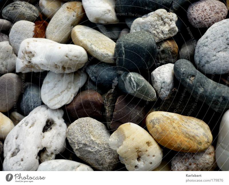 oO0oO00Oo Natur Farbe Erholung ruhig kalt Umwelt Wege & Pfade grau Lifestyle Stein liegen Design Zufriedenheit rund Gelassenheit Wohlgefühl