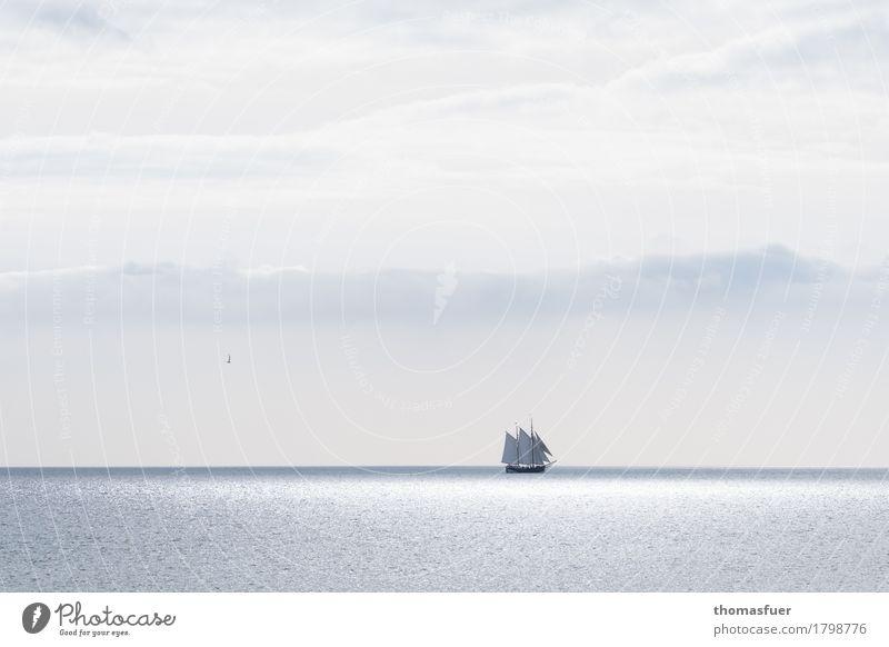 """""""Und einsam blinkt ein weißes Segel..."""" Himmel Ferien & Urlaub & Reisen Sommer Wasser Sonne Meer Wolken ruhig Ferne Freiheit Tourismus Horizont träumen Luft"""