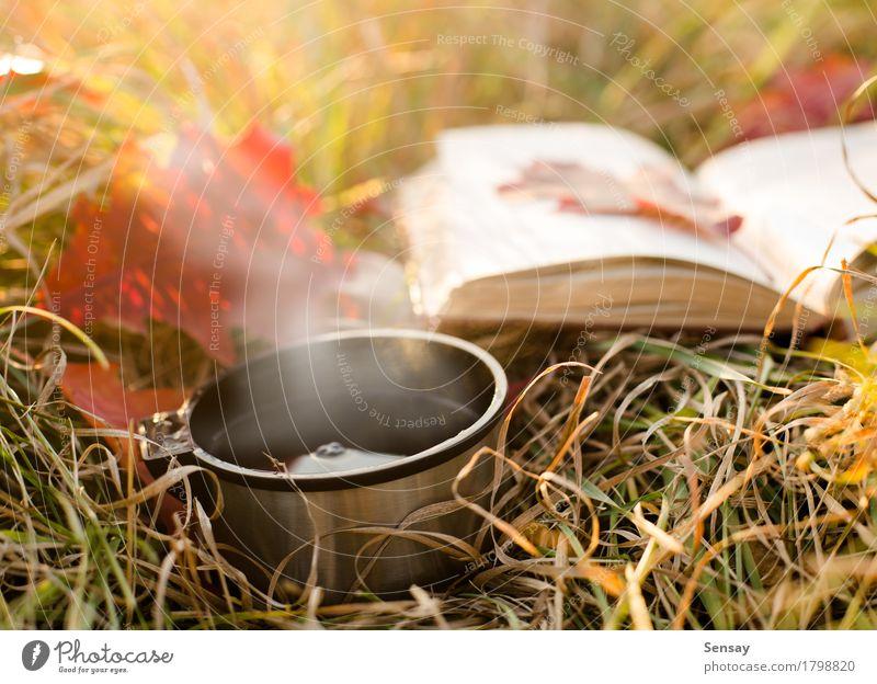 Isolierflasche und Buch auf Herbsthintergrund Kaffee Tee Flasche Freude lesen Ferien & Urlaub & Reisen Winter Wärme Gras Blatt Park Metall Stahl heiß rot weiß