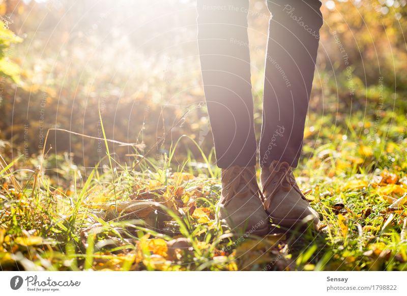 Beine in den stilvollen Stiefeln auf Herbsthintergrund Mensch Frau Natur Mann Sommer grün schön weiß Sonne Blatt Mädchen Wald Erwachsene gelb natürlich