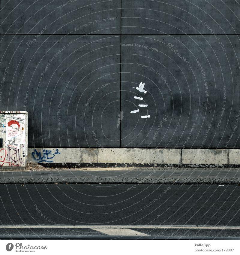 wir kommen in frieden Tier Umwelt Architektur Graffiti Kunst Vogel Angst fliegen Design gefährlich Mord Mensch Medien Todesangst Krieg