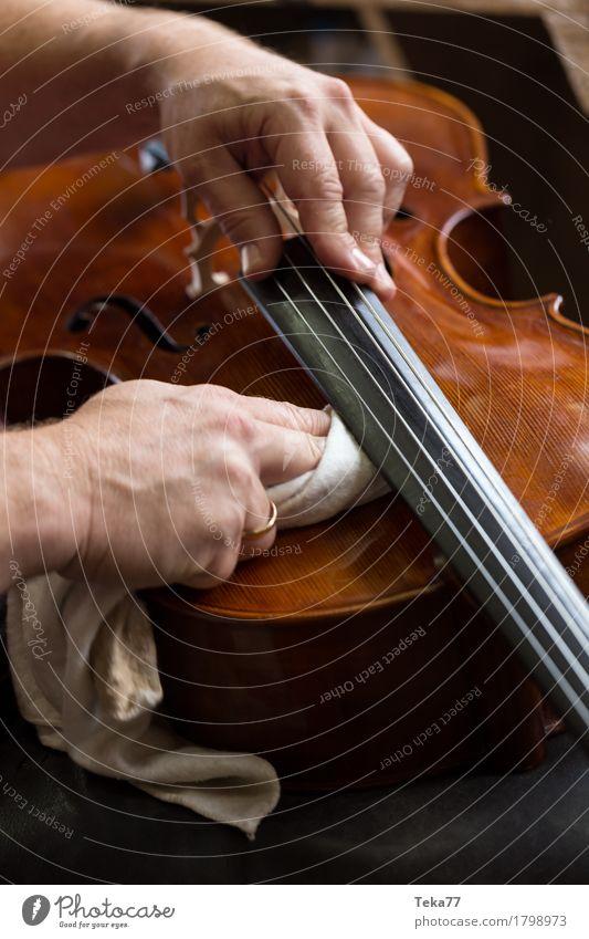Geigenbau IIIIIII Stil Musik Beruf Handwerker Geigenbauer Arbeitsplatz Mensch ästhetisch Musikinstrument Nahaufnahme Detailaufnahme