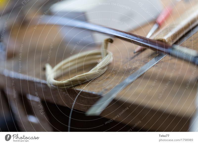 Geigenbau IIIIII Stil Musik Bildung Beruf Handwerker Geigenbauer Mensch ästhetisch Musikinstrument Farbfoto Nahaufnahme Detailaufnahme Menschenleer