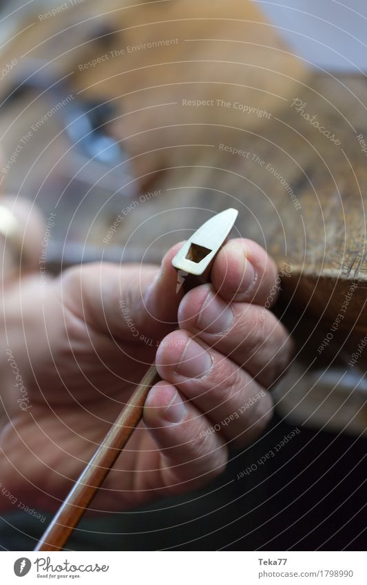 Geigenbau IIII Stil Musik Arbeit & Erwerbstätigkeit Beruf Handwerker Mensch Kunst Künstler ästhetisch Geigenbauer Farbfoto Studioaufnahme Nahaufnahme