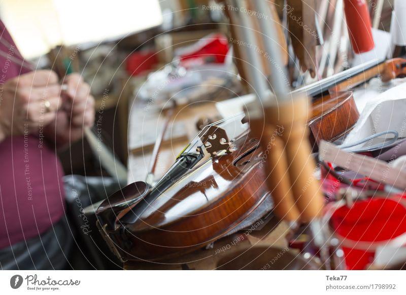 Geigenbau III Stil Musik Arbeit & Erwerbstätigkeit Beruf Handwerker Mensch Kunst Künstler ästhetisch Geigenbauer Farbfoto Studioaufnahme Nahaufnahme