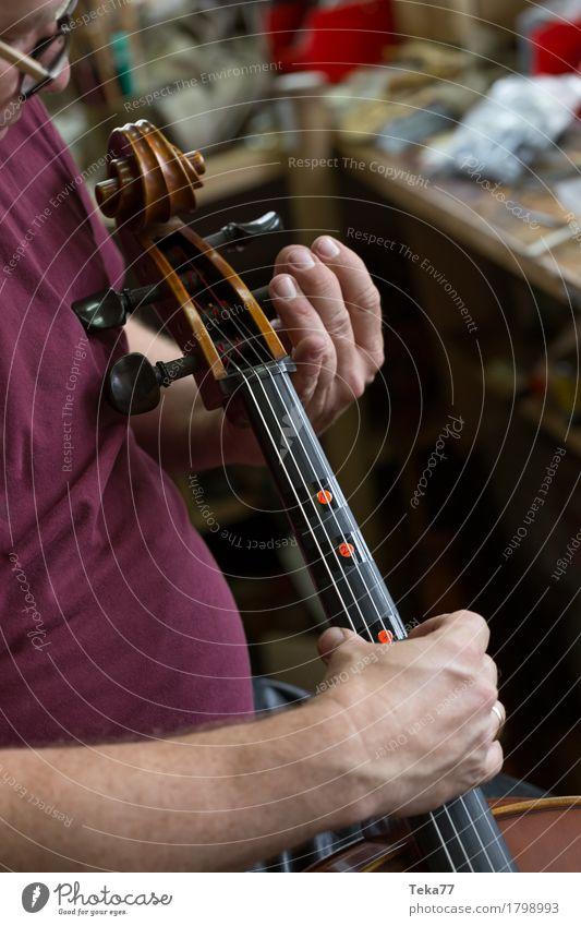 Geigenbau II Stil Musik Arbeit & Erwerbstätigkeit Beruf Handwerker Mensch Kunst Künstler ästhetisch Geigenbauer Studioaufnahme Nahaufnahme Detailaufnahme