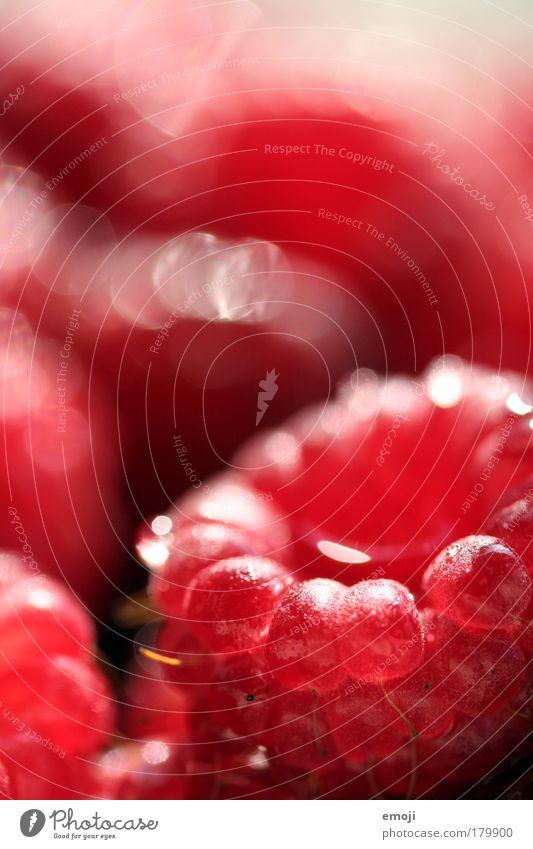 HAM! und weg. Farbfoto Außenaufnahme Nahaufnahme Detailaufnahme Makroaufnahme Textfreiraum oben Schwache Tiefenschärfe Frucht Ernährung Bioprodukte