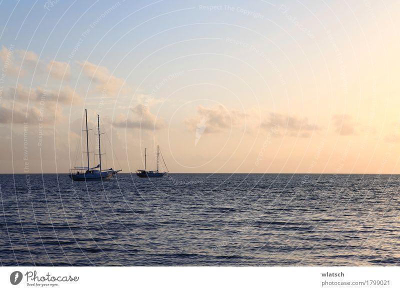 Boote in Sonnenröte Wasser Wolken Sonnenaufgang Sonnenuntergang Sommer Schönes Wetter Küste Bucht Meer Insel Schifffahrt Bootsfahrt Segelboot Holz