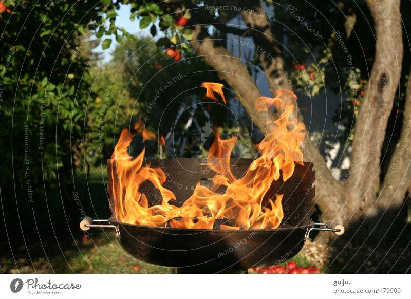 DER FLAMMENDE GRILL MKII Farbfoto Außenaufnahme Abend Sonnenlicht Sommer Feste & Feiern Natur Feuer Garten Grill heiß Grillen Park rot Idylle orange Metall Baum