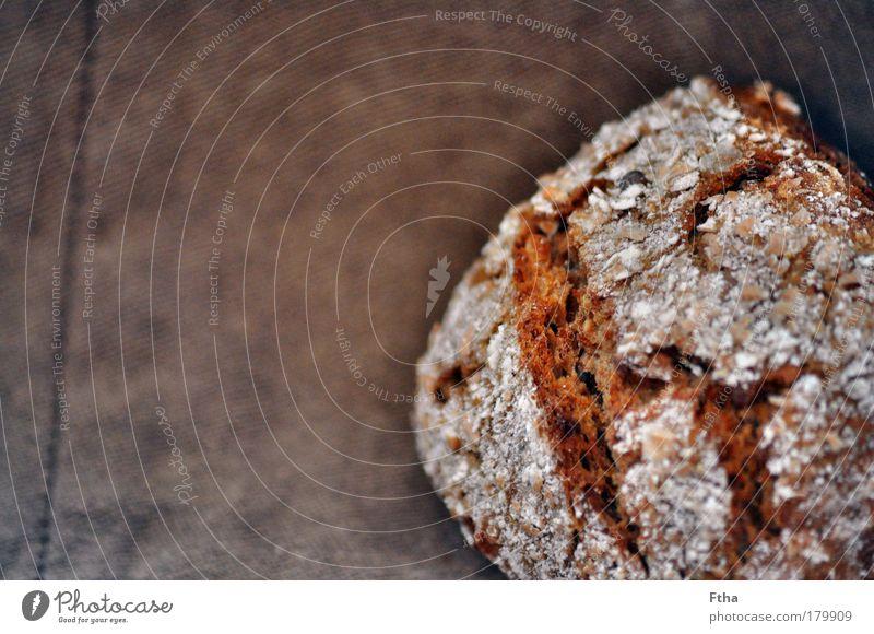 Brötchenduft Ernährung braun Lebensmittel lecker Appetit & Hunger Duft Brot Backwaren Vesper Oberfläche Kruste knusprig Vollkorn Körnerbrot