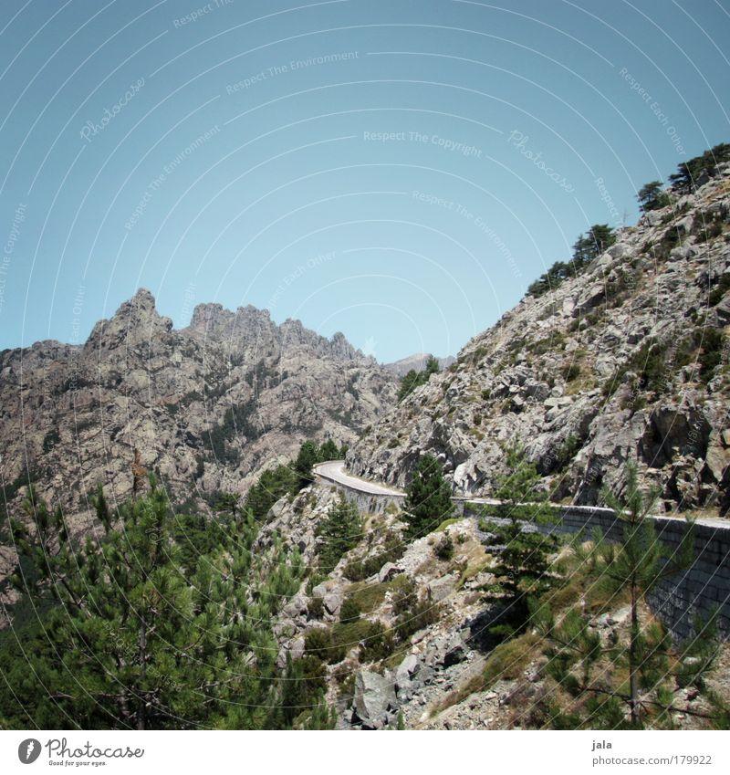 call of the wild Farbfoto Außenaufnahme Menschenleer Tag Landschaft Himmel Felsen Berge u. Gebirge Verkehrswege Straße Ferien & Urlaub & Reisen Aussicht Baum