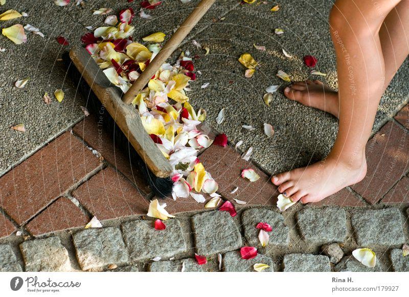 SommerEnde Mädchen rot Freude gelb feminin grau Fuß Beine Feste & Feiern Haut rosa Ordnung Sauberkeit Reinigen natürlich Kindheit