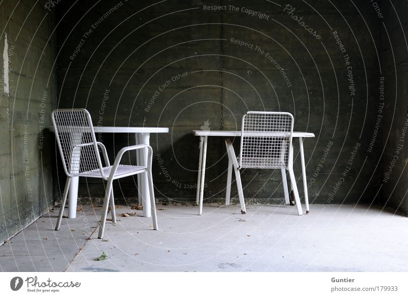 Herbstgefühle weiß grün Blatt schwarz dunkel Wand Garten grau Traurigkeit Stimmung dreckig Beton Tisch Stuhl Ende Rost
