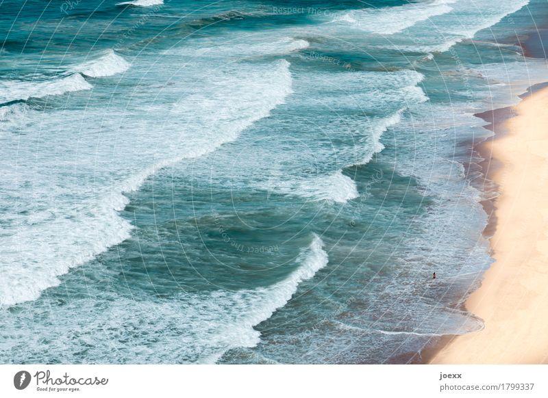Wellengang Ferien & Urlaub & Reisen Ferne Sommerurlaub Strand Meer Junge Frau Jugendliche 1 Mensch Landschaft Schönes Wetter Schwimmen & Baden blau braun weiß