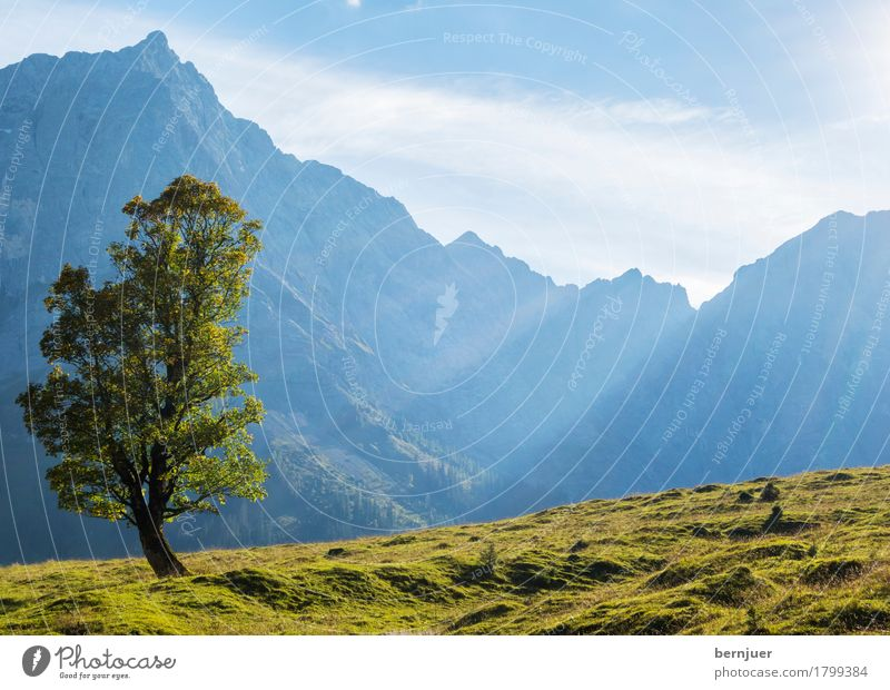 Herbst Umwelt Natur Landschaft Pflanze Luft Himmel Wolken Schönes Wetter Baum Alpen Berge u. Gebirge Gipfel wandern authentisch blau grün Ehrlichkeit Tourismus