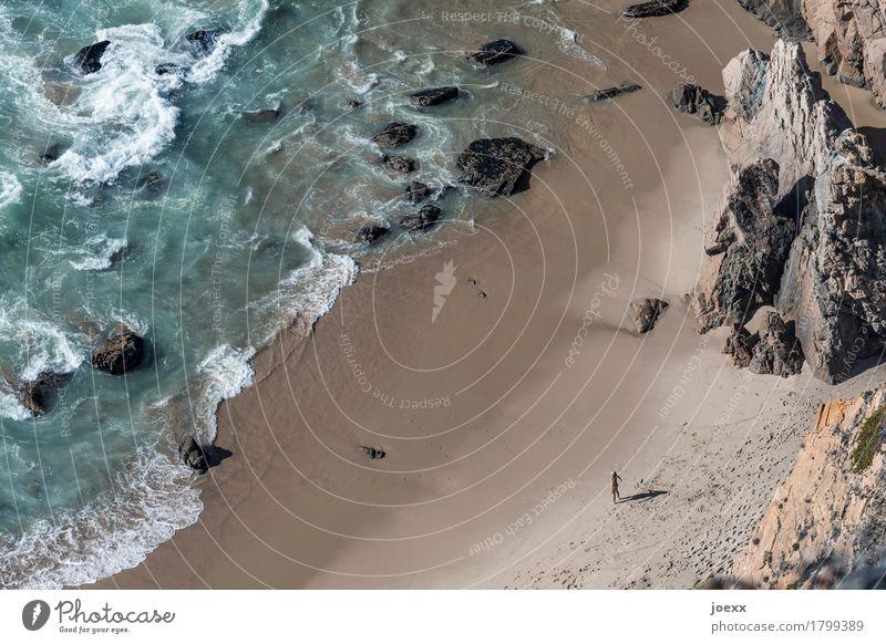 Ist das einzige, was zählt. Ferien & Urlaub & Reisen Strand Meer Wellen feminin Frau Erwachsene 1 Mensch Natur Wasser Sommer Schönes Wetter Felsen Küste frei