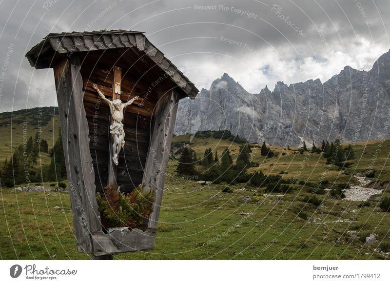 Kruzifix Natur Landschaft Wolken Wetter schlechtes Wetter Baum Gras Alpen Berge u. Gebirge Gipfel Holz Zeichen alt braun grün Glaube Religion & Glaube ruhig