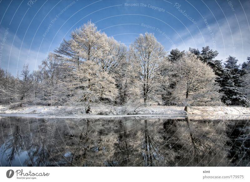 schnee am see Farbfoto Außenaufnahme Menschenleer Textfreiraum oben Tag Sonnenlicht Starke Tiefenschärfe Weitwinkel Winter Schnee Winterurlaub Natur Landschaft