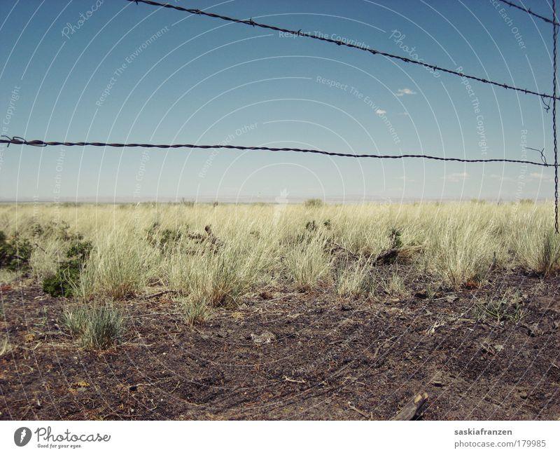 To build a fence. Gedeckte Farben Außenaufnahme Menschenleer Tag Sonnenlicht Zentralperspektive Landschaft Himmel Sommer Schönes Wetter Dürre Pflanze Gras