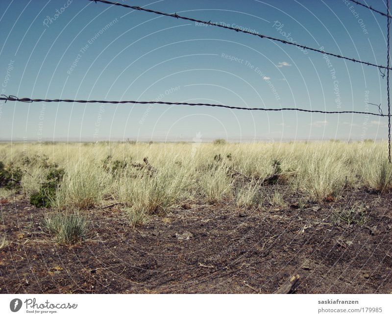 To build a fence. Himmel Pflanze Sommer Ferne Gras Landschaft Sträucher Schönes Wetter Dürre
