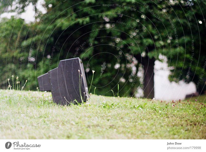 Public Viewing Unschärfe Garten Fernsehen Fernseher Baum Gras Wiese außergewöhnlich Umweltverschmutzung Umweltschutz absurd verschandeln Sperrmüll Außenaufnahme