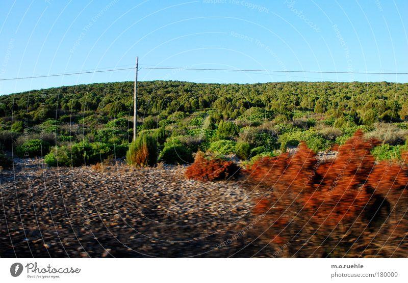landscaped Natur schön Meer grün blau Pflanze rot Wärme Landschaft Umwelt ästhetisch Insel Sträucher weich wild natürlich