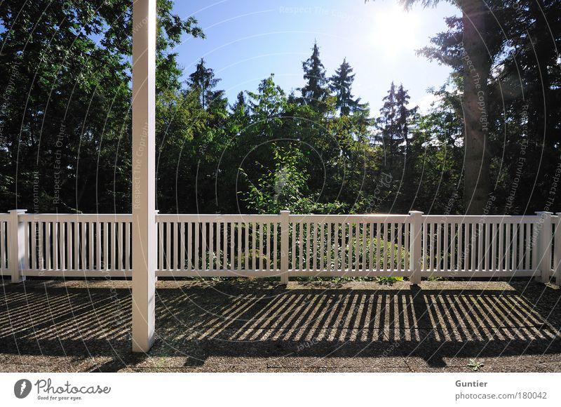 Aussicht verwehrt Himmel weiß Sonne grün blau Sommer schwarz Wald Holz Tanne Balkon Baumstamm Geländer Harz Nadelbaum