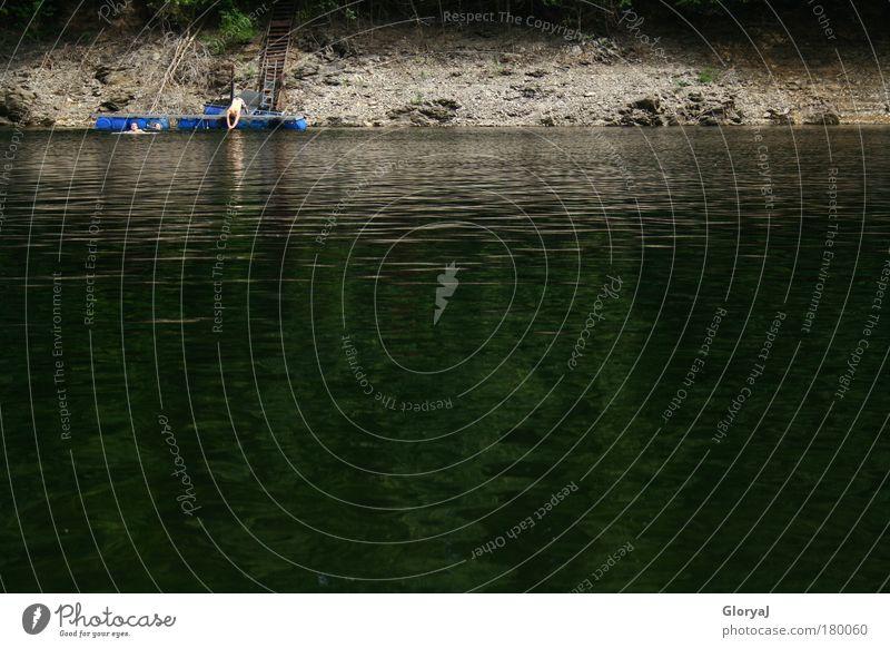 Sprung ins kalte Wasser grün Sommer Freude ruhig schwarz Erwachsene dunkel grau springen nass Schwimmen & Baden bedrohlich einfach 18-30 Jahre Vertrauen