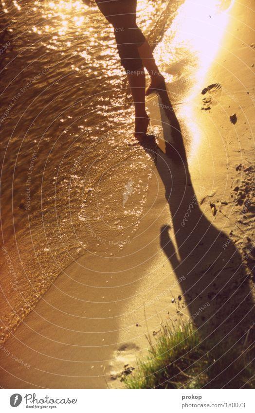 Wasserballett Frau Mensch Natur Jugendliche schön Sommer Freude ruhig Erholung feminin Glück Fuß See Wärme Sand