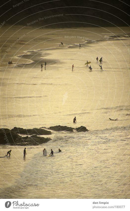 surfer Mensch Ferien & Urlaub & Reisen Sommer Meer Strand Landschaft Freiheit Bewegung Menschengruppe Wellen gold Freizeit & Hobby Felsen Tourismus Insel Bucht