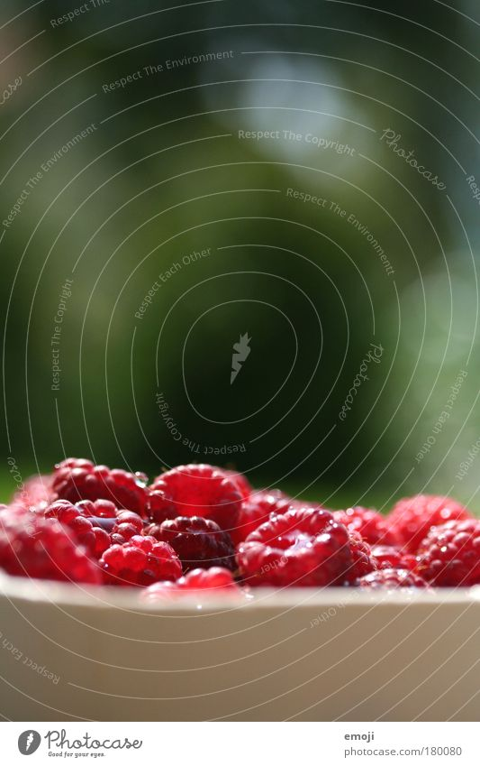 greift ruhig zu! weiß grün rot Ernährung Gesundheit Frucht frisch natürlich Teilung Ernte Schalen & Schüsseln Bioprodukte Landwirtschaft Himbeeren fruchtig