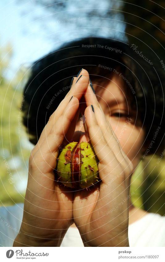 Aus dem Walde Frau Natur Jugendliche schön Pflanze Erholung Leben feminin Gefühle Landschaft Umwelt Glück Erwachsene Hoffnung einzigartig