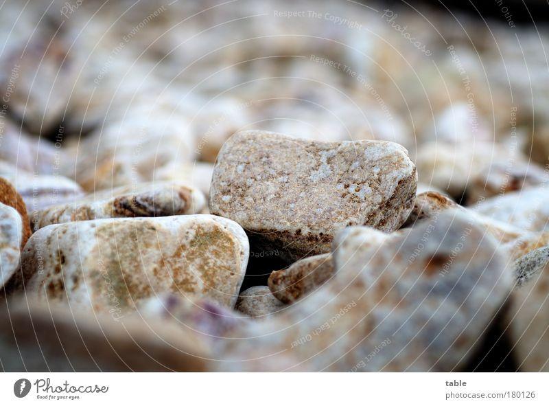 harte Zeiten . . . Farbfoto Gedeckte Farben Menschenleer Textfreiraum oben Froschperspektive Umwelt Stein gebrauchen schreien werfen eckig fest Zusammensein