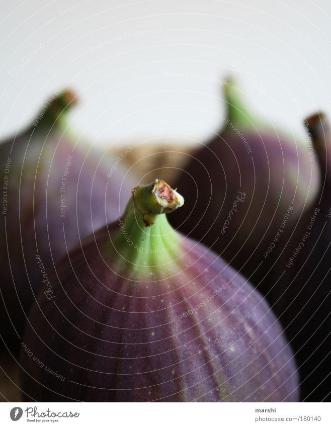 Ficus Farbfoto Nahaufnahme Detailaufnahme Makroaufnahme Lebensmittel Frucht Ernährung Bioprodukte Natur Pflanze Baum grün violett lecker Gesundheit 4 Unschärfe