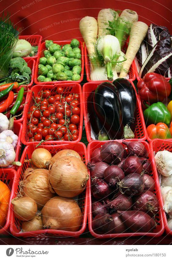 Alles frisch rot Pflanze Gesundheit natürlich Lebensmittel Ernährung gut Gemüse lecker Bioprodukte Markt Kohl Korb Tomate saftig Supermarkt