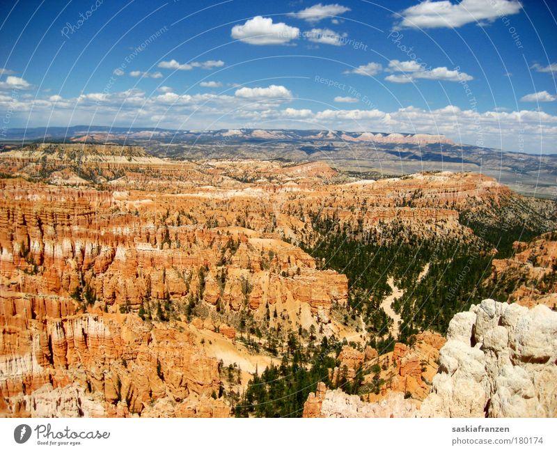 Bryce. Himmel Natur Baum Sonne Sommer Ferien & Urlaub & Reisen Wolken Ferne Wald Freiheit Berge u. Gebirge Landschaft Umwelt Park Ausflug Felsen