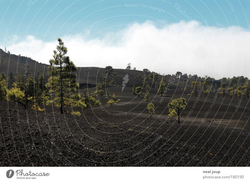 Mondlandschaft - 1 grün Ferien & Urlaub & Reisen Wolken schwarz Ferne Berge u. Gebirge Landschaft Luft Erde Wachstum Europa trist Urelemente Vulkan Neuanfang Endzeitstimmung