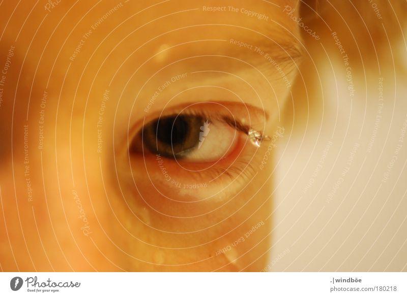 Augenblick Mensch Mann Jugendliche alt Gesicht Erwachsene gelb Leben Junge Wärme grau Kopf blond gold glänzend