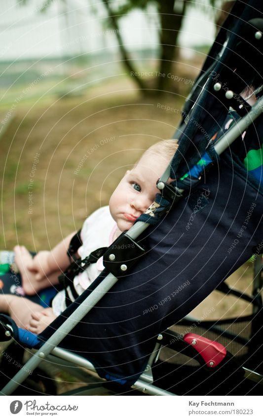 skepsis Baby 0-12 Monate sitzen frech klein Zufriedenheit Langeweile Kinderwagen kindlich Farbfoto Außenaufnahme Tag Schwache Tiefenschärfe Zentralperspektive