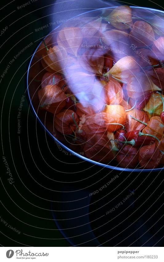 ghost Mensch Hand blau Pflanze rot gelb dunkel kalt Herbst Gefühle Bewegung träumen Wärme hell Metall maskulin
