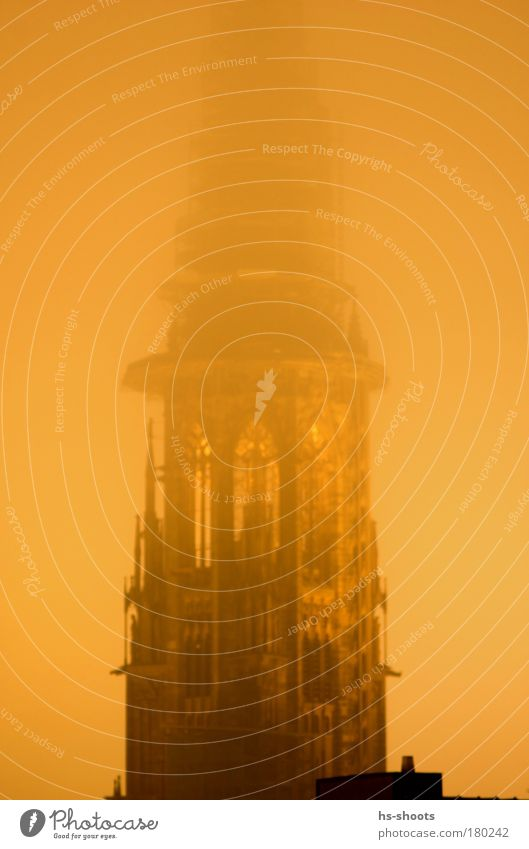Freiburger Münster im Winter bei Nebel Farbfoto Abend Dämmerung Nacht Freiburg im Breisgau Deutschland Kirche Turm Bauwerk Gebäude Architektur Stein gelb gold