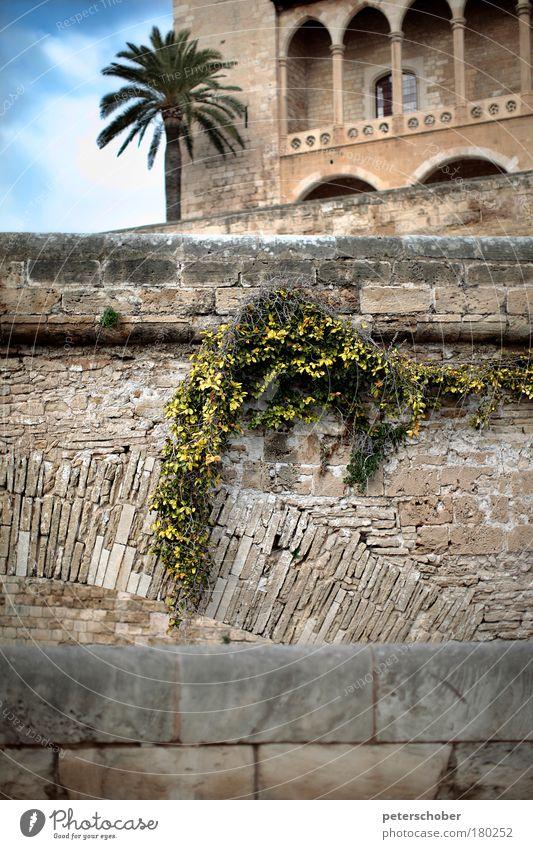 La Seu, Palma de Mallorca, Spanien Himmel Ferien & Urlaub & Reisen Winter Wand Fenster Architektur Sand Stein Mauer Fassade Insel Klima Kirche Bauwerk Backstein