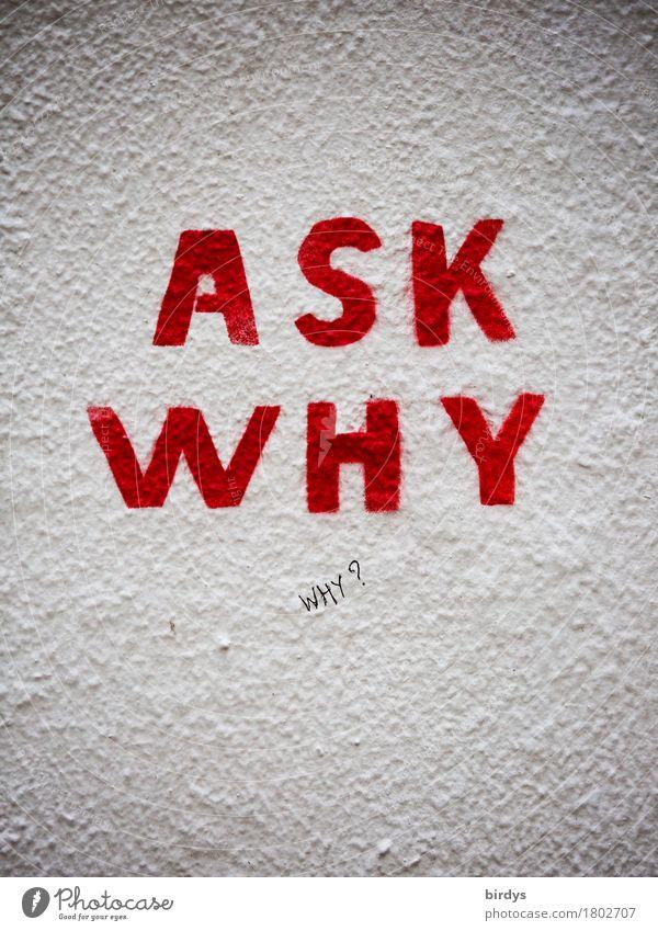 why ?... Kultur Mauer Wand Schriftzeichen Graffiti Denken ästhetisch Neugier rebellisch grau rot weiß Mut Verantwortung Wachsamkeit gewissenhaft Wahrheit