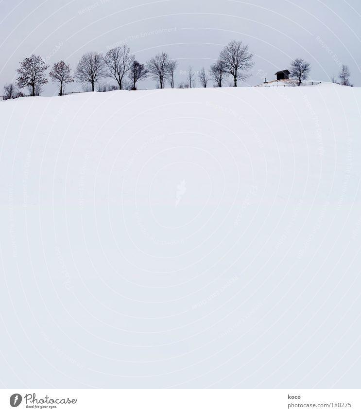 Winter Natur weiß Baum blau schwarz Schnee Berge u. Gebirge grau Landschaft ästhetisch Hügel Haus Hütte